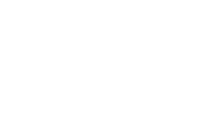 The BiGroup
